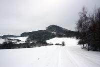 "Blick vom ehemaligen ""Kolonnenweg"" zur Keudelskuppe."
