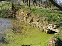 Der alte Teich am Keudelstein (2004)
