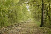 Bahnstrecke in Richtung Geismar