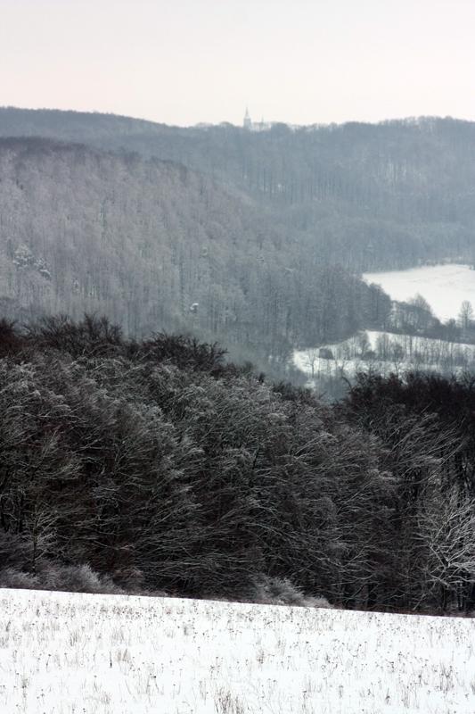 Blick von der Birke zum Eichsfelder Dom (Effelder)