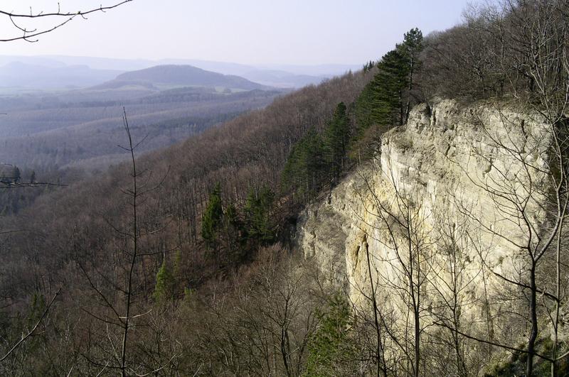 Blick von der Plesseschlucht zum Hülfensberg