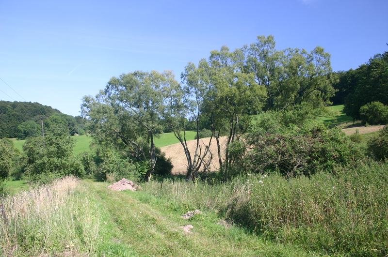 Keudelskuppe und Keudelstein im August 2007